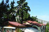 Η άγνωστη ιστορία του ναού Αγίων Ελισάβετ και Φιλίππου στη Νίκαια