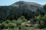 Κινδυνεύουν οι θαυμαστές βουνοκορφές των Αγράφων