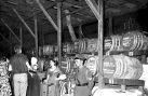 Πως γεννήθηκε η επιτυχημένη «Γιορτή Κρασιού» στο Δαφνί (1953)