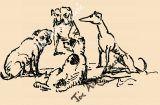 Ο μικρός Φτωχούλης, ο Τρυζώνης  και τα άλλα σκυλάκια των Αθηνών
